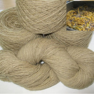 Single Ply - Goldenrod/Iron